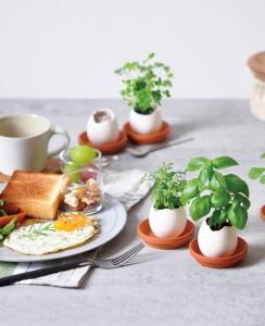 eggling