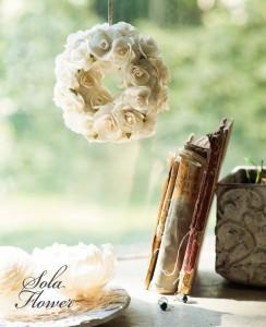 sola_image_1